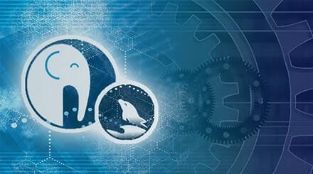 Курс PHP / MySQL